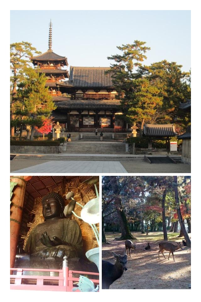 Nara top 27-1-8