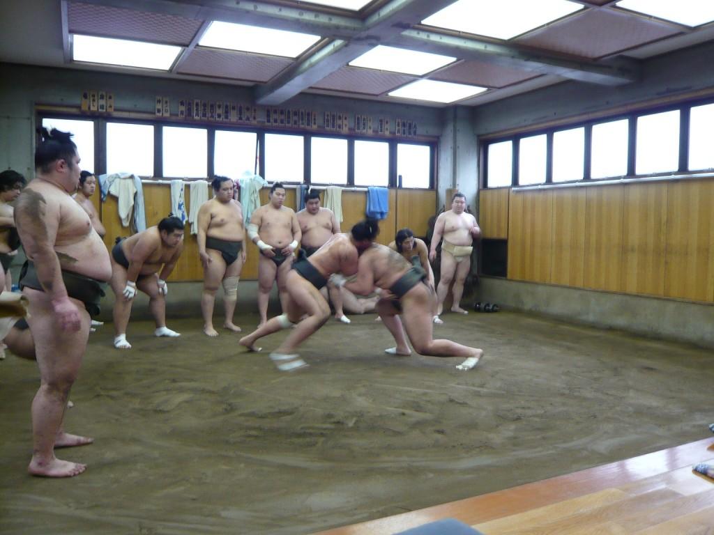 a-sumo