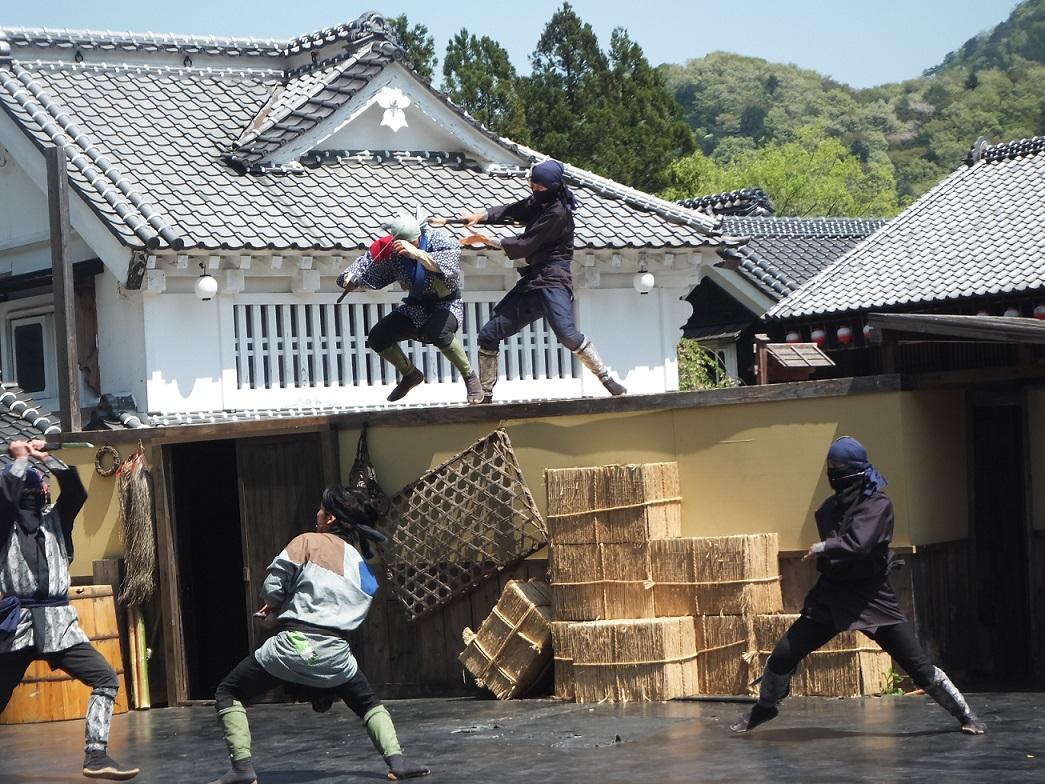 nikko edomura v-2 29-12-17